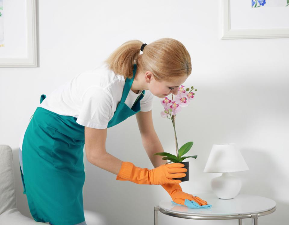 lady cleaning